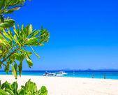 沙滩和热带海砂 — 图库照片