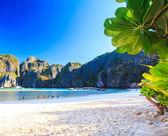 Wyspa zatoka — Zdjęcie stockowe