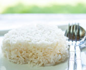 Rice in white dish — Stock Photo