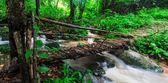 Footbridge across the falls — Stockfoto