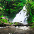 Waterfall in rainforest — Stock Photo #37430339