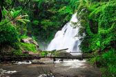 Cascada en el bosque lluvioso — Foto de Stock