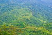 Tropical Mountain Range — Stock Photo
