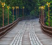 木桥 — 图库照片