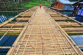 Bamboo bridge across the river — Stock Photo