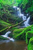 Vackra vattenfall — Stockfoto
