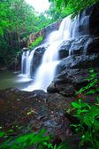 Cascade de la forêt profonde — Photo