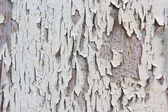 Old paint on a wooden door — Stock Photo