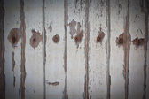 Old wooden door background — Stock Photo