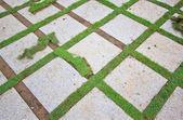 Brique avec pelouse manucuré — Photo