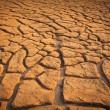Stock Photo: Cracked soil ground