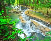Cascada en el bosque — Foto de Stock