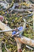Człowiek cięcia kawałek drewna — Zdjęcie stockowe