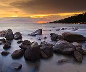 Tropiska stranden — Stockfoto