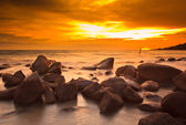 Tropical sea beach — Stock Photo