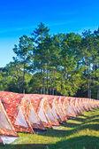 Campsite — Zdjęcie stockowe