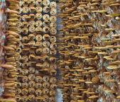 Mushroom Ganoderma lucidum — Stock Photo