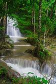 Cascade dans la forêt — Photo