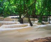 Wodospad w lesie — Zdjęcie stockowe
