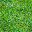 Artificial grass — Stock Photo #38192377
