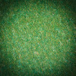 Artificial grass — Stock Photo #38192439
