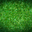 Artificial grass — Stock Photo #38192793