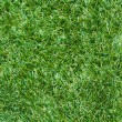 Artificial grass — Stock Photo #38192835