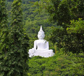Statue Buddha in forest — Stock Photo