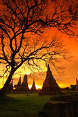 Sunset over old Temple — Stock Photo