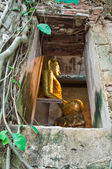Buddhist church surrounded by tree roots — Zdjęcie stockowe