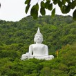 Stock Photo: Mountain Buddha