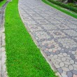 Paths through park — Stock Photo #39815481