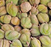 Durian fruits — Stock Photo
