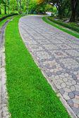 Paths through the park — Стоковое фото