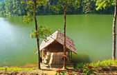 House on lake — Stock Photo