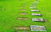 木制步行 — 图库照片