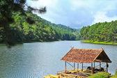 деревянный пирс на огромное озеро — Стоковое фото