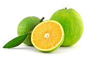 Green orange — Stock Photo
