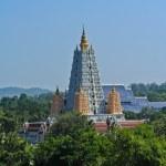 Pagoda — Stock Photo #40997655