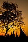 Temple of Ayudhaya — Stock Photo