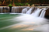 Waterfall in forest — Stock Photo
