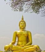Big buddha in temple — Stock Photo