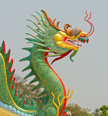 Beautiful dragon — Stock Photo