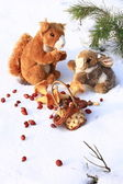 Squirrel and a rabbit in the woods with gifts from Santa Claus — Stock Photo