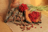 Jar of clay with bark and berries, along with nuts, wheat on linen tablecloth — Stock Photo