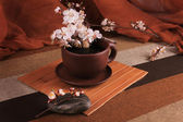 A cup of tea out of clay with blooming cherry twig — Stock Photo