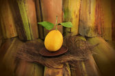 Lemon lemon and wild flowers on bamboo — Stock Photo