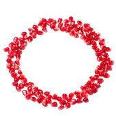 Circle pomegranate pieces — Stock Photo