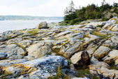 Beautiful rocky shore in Norway — Stock fotografie