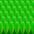 Green leaf pattern design — Stock Photo